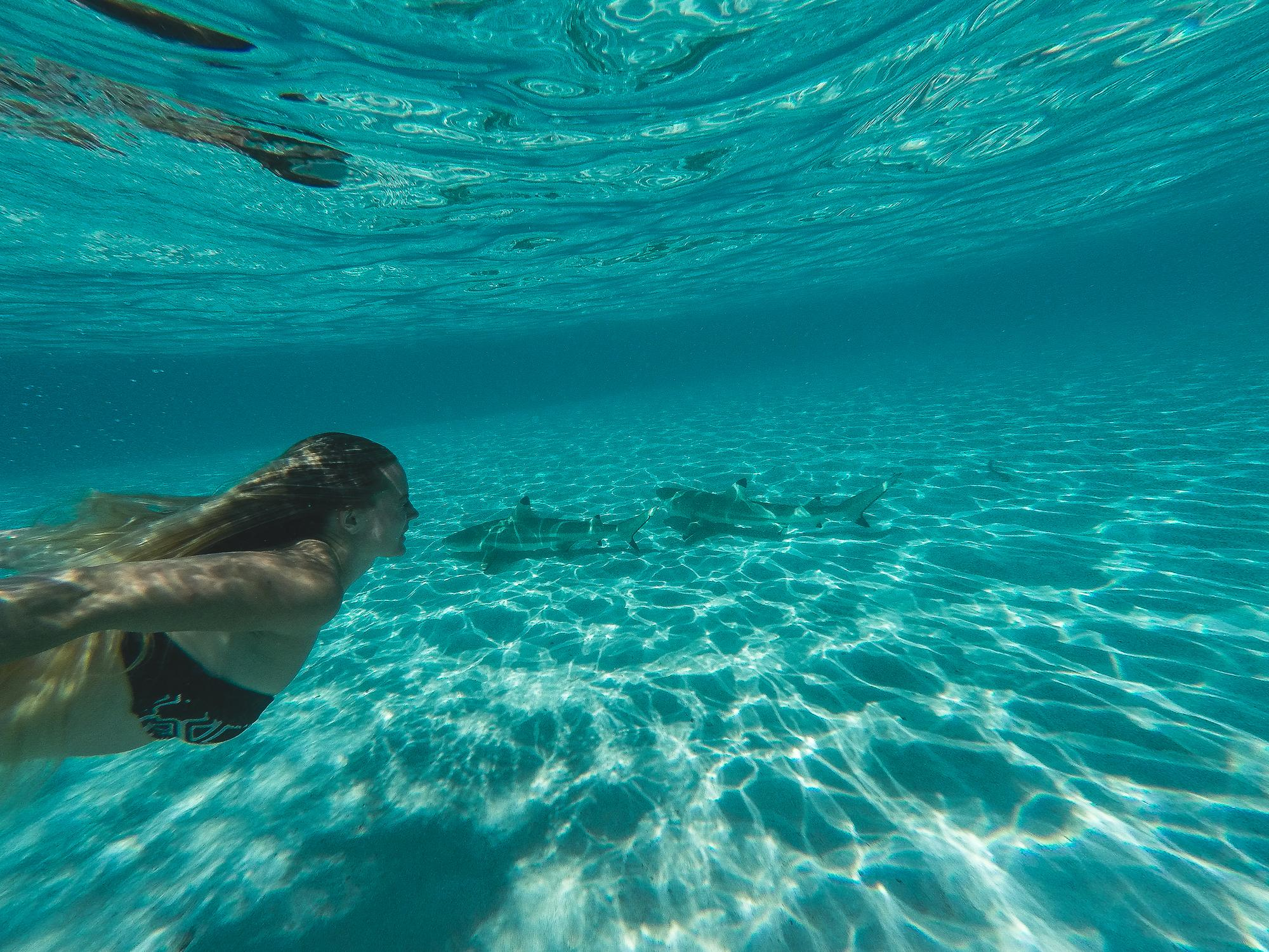 Que faire tahiti itin raire sur 15 jours conseils for Chambre 13 tahiti plage