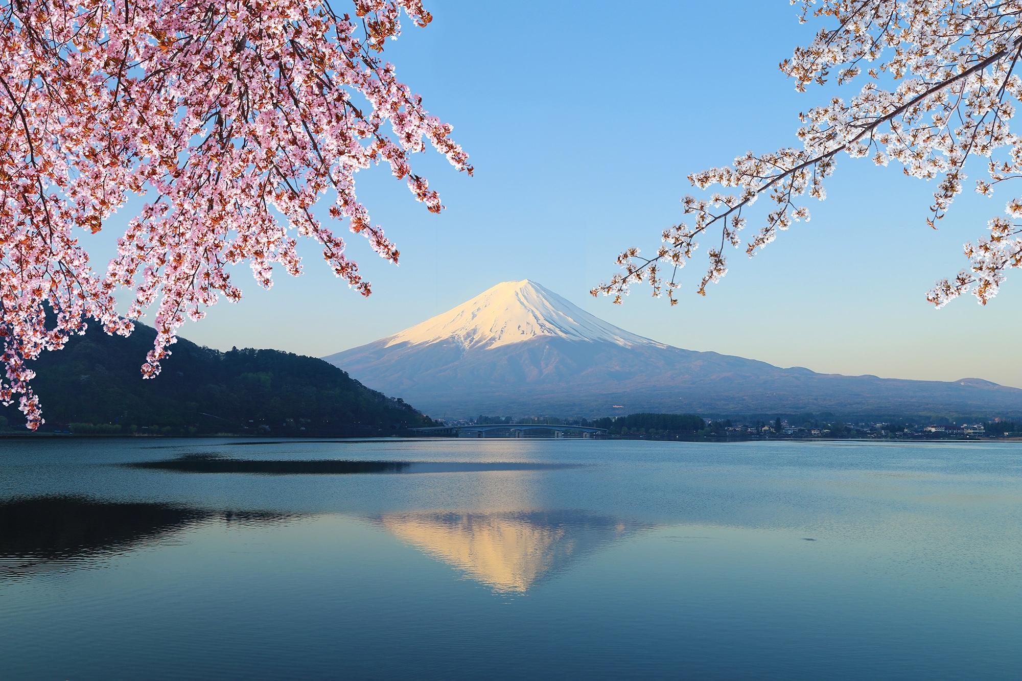 Image Le Japon en 52h !