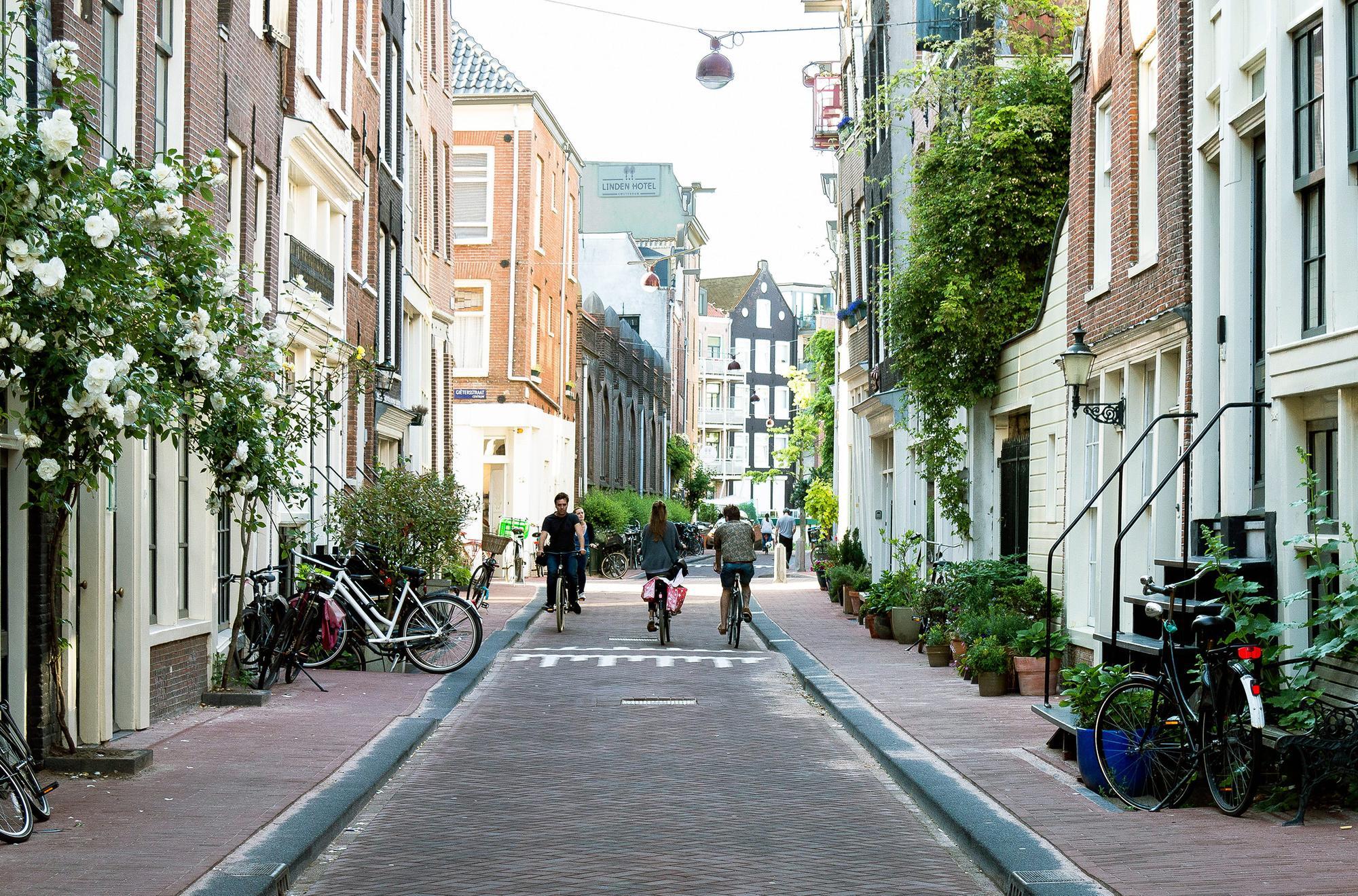 Image Top 10 des choses à faire à Amsterdam