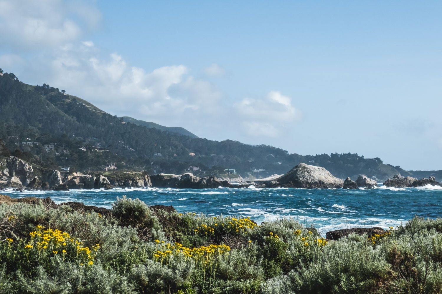 Point lobos natural reserve, californie, highway 1