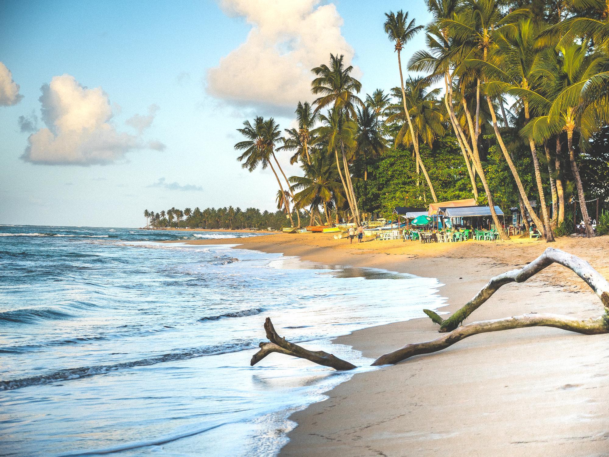 Image Découverte de la baie de Samana en République Dominicaine
