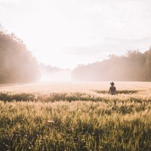 escapade en lorraine-lorraine-séjour en lorraine-vent des forêts-nature-hattonchatel-butte de vauquois